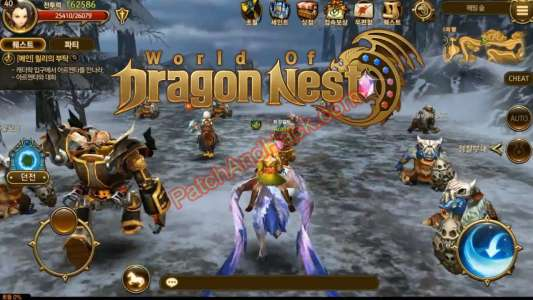 Dragon Nest Patch and Cheats damage, gold, XP