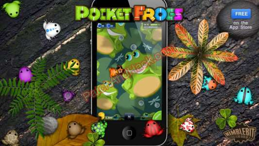 Pocket Frogs Patch and Cheats coins