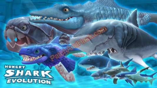 Hungry Shark Evolution Codes Patch and Cheats money, crystals