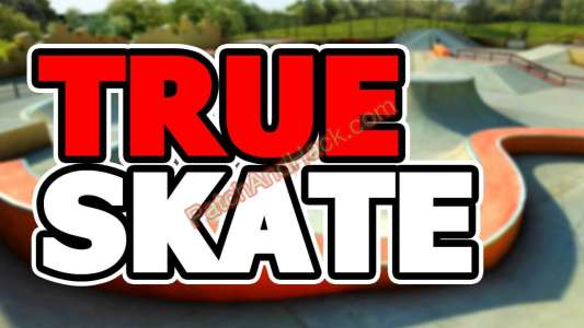 True Skate Patch and Cheats money